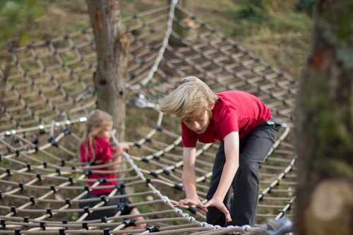 We Made That, Free Play — Wild Kingdom playspace