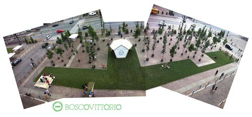 MAGMAPROGETTI — Boscovittorio
