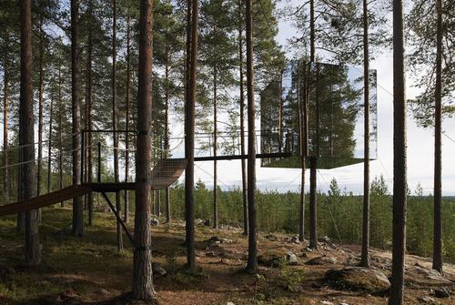 Tham & Videgård Arkitekter — Tree hotel in Harads