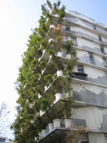 maison edouard fran ois flower tower divisare by europaconcorsi. Black Bedroom Furniture Sets. Home Design Ideas