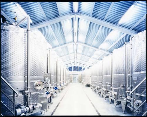 caruso torricella architetti — Wine Cellar