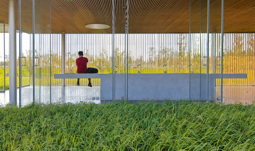 Vector Architects — Eco-Farm Series - Harvest Pavilion