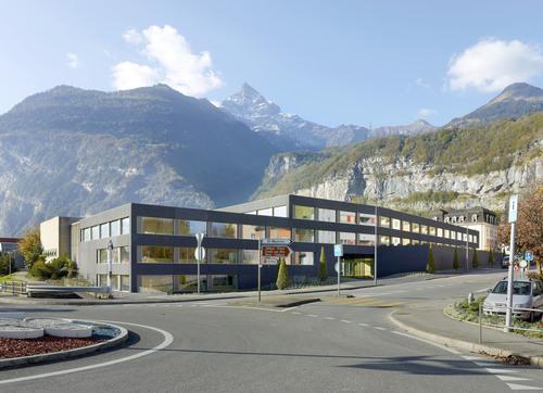 Graeme Mann & Patricia Capua Mann — Educational and occupational training establishment