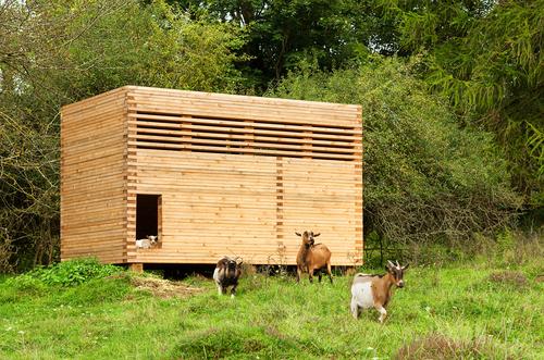 Michael Kühnlein — Timber Barn for goats