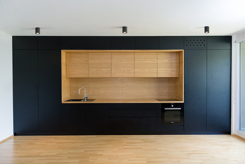 Arhitektura d.o.o., Boštjan Gabrijelčič, Aleš Gabrijelčič— Black line apartment in Ljubljana