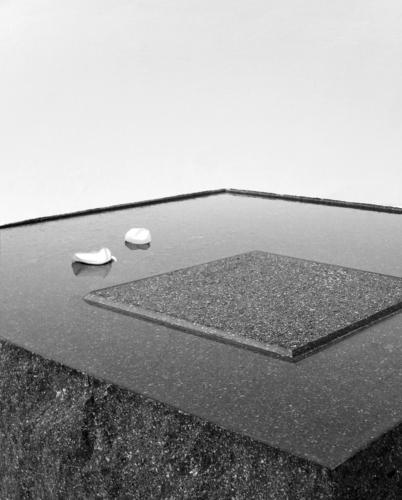 1+1=1 ClaudioSilvestrinGiulianaSalmaso architects — il silenzio dell'acqua