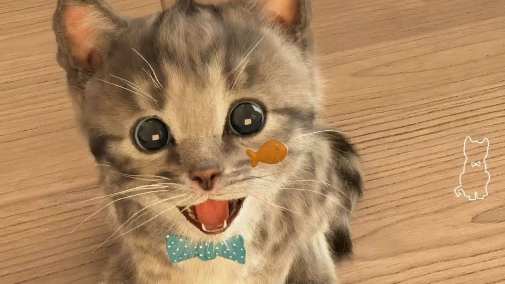Play Fun Little Kitten My Favorite Cat – Fun Cute Cat Care Kids Games Cartoon for Children