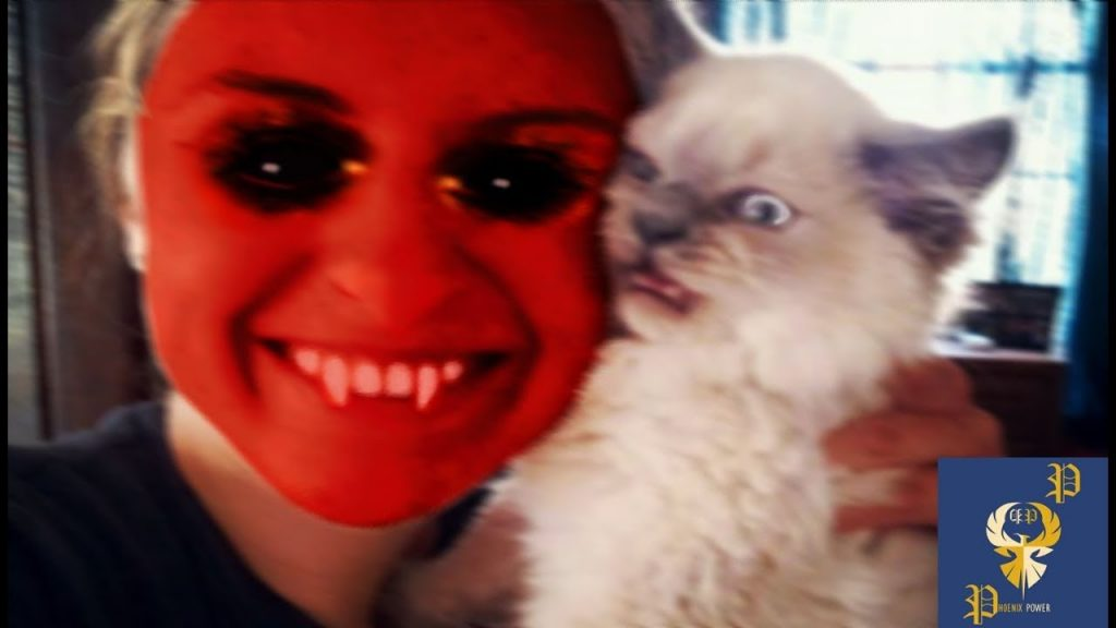 Funny Cats Scared of Masks – Part 2