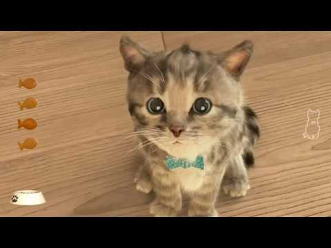 My Favorite Cat – Little Kitten Cat Care Game for Kids – Play with Kitten and Have Fun