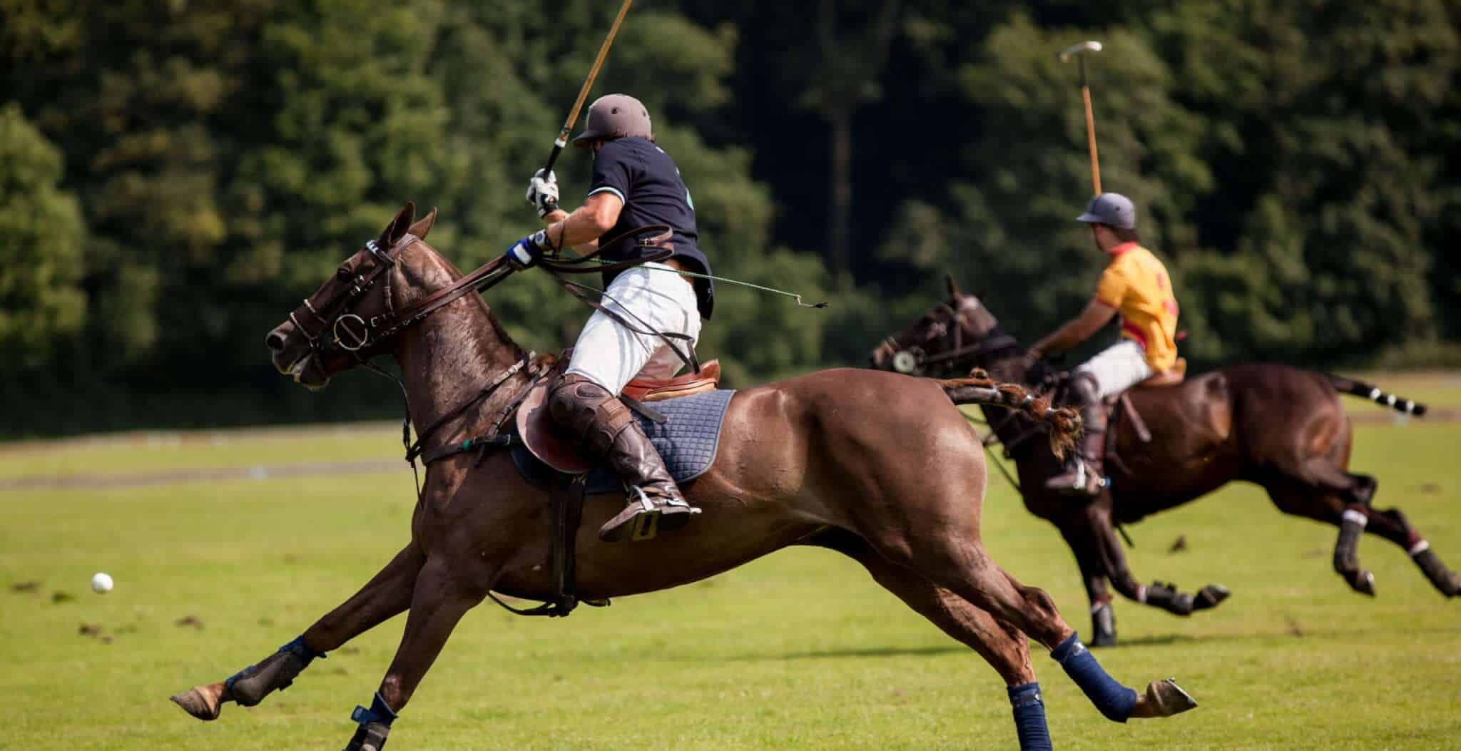 The origins and history of polo