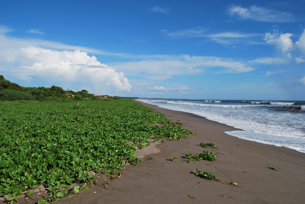 Beach Houses For Sale In Nicaragua Part - 42: House For Sale In Quizala, Nicaragua