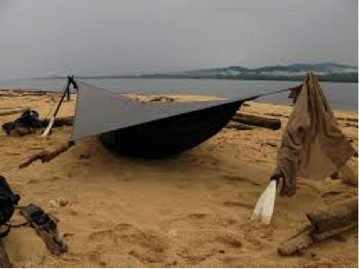 hammock on the beach