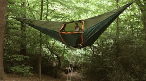 hammock camping in the trees