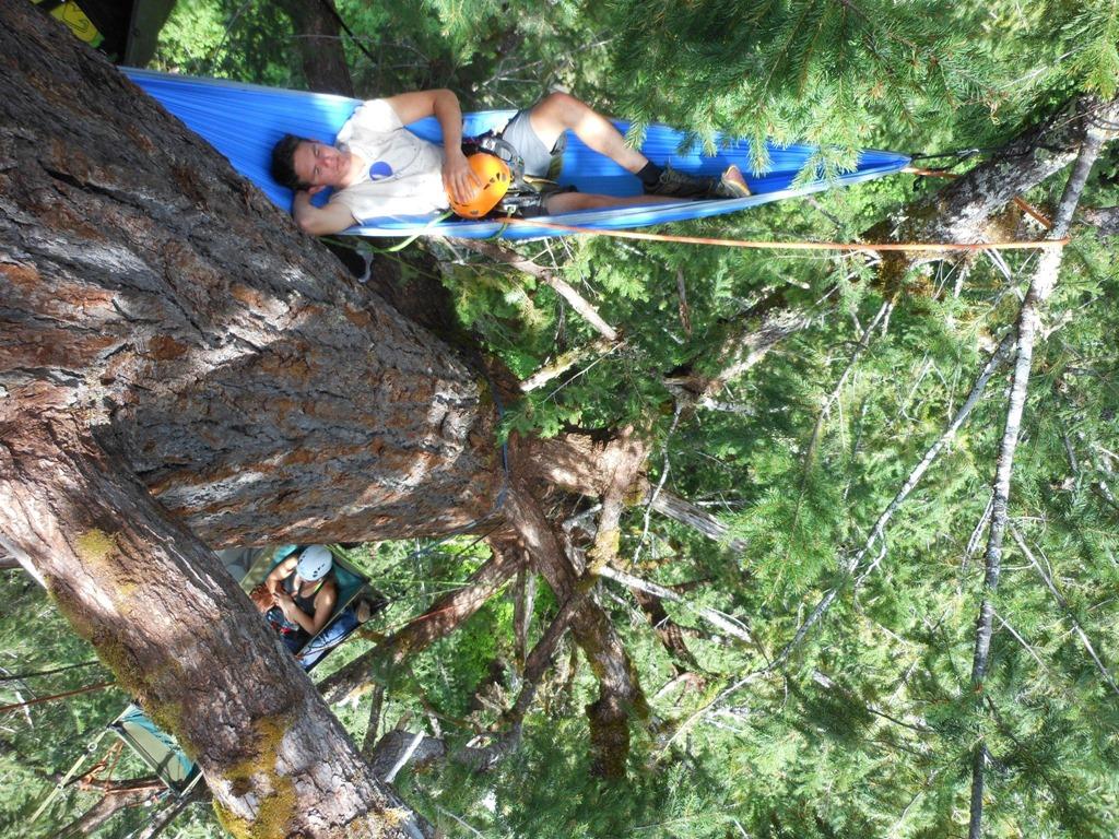 hammocking high up