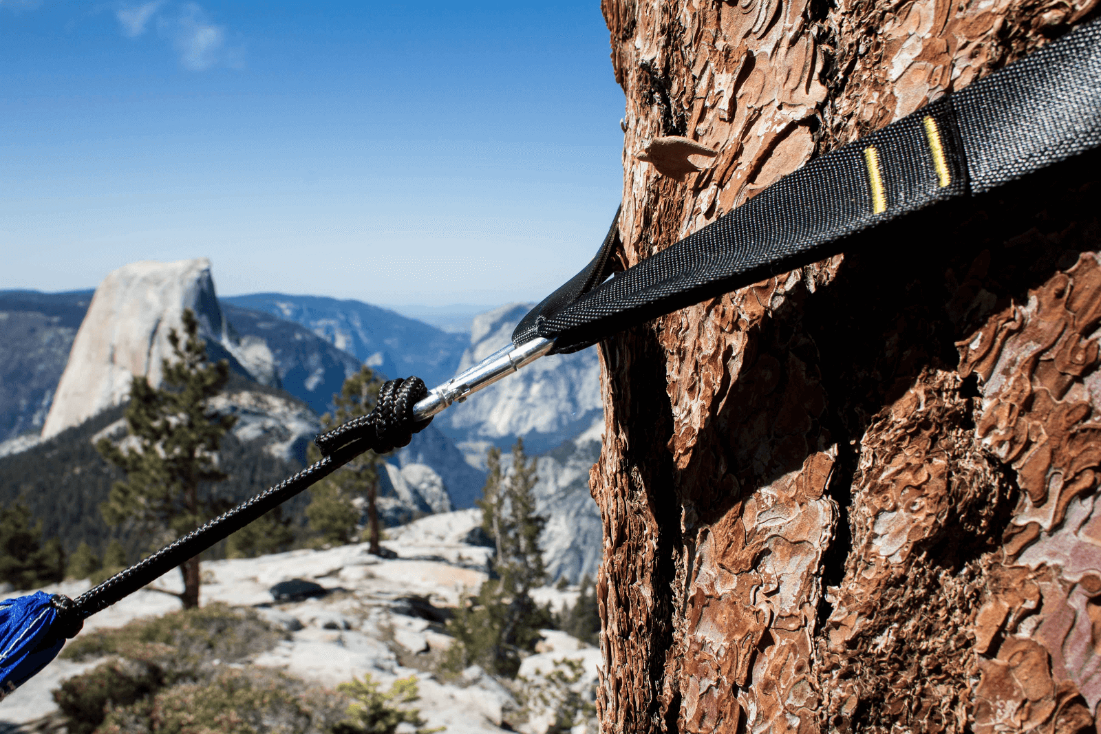 Wide tree straps prevent damage to the bark compared to paracord. Photo courtesy of Serac Camping Hammocks.