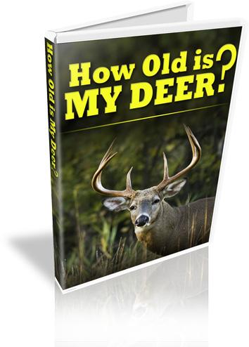 How Old Is My Deer