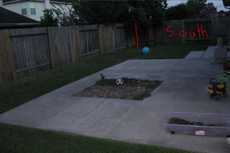 backyard - East and South side