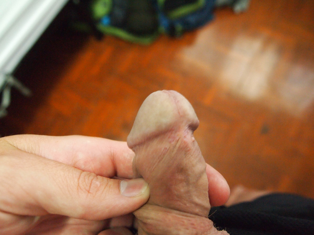 Heres What the Perfect Penis Looks Like According to Women