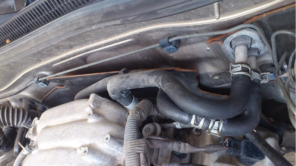 how to change under radietor hose on ford courier