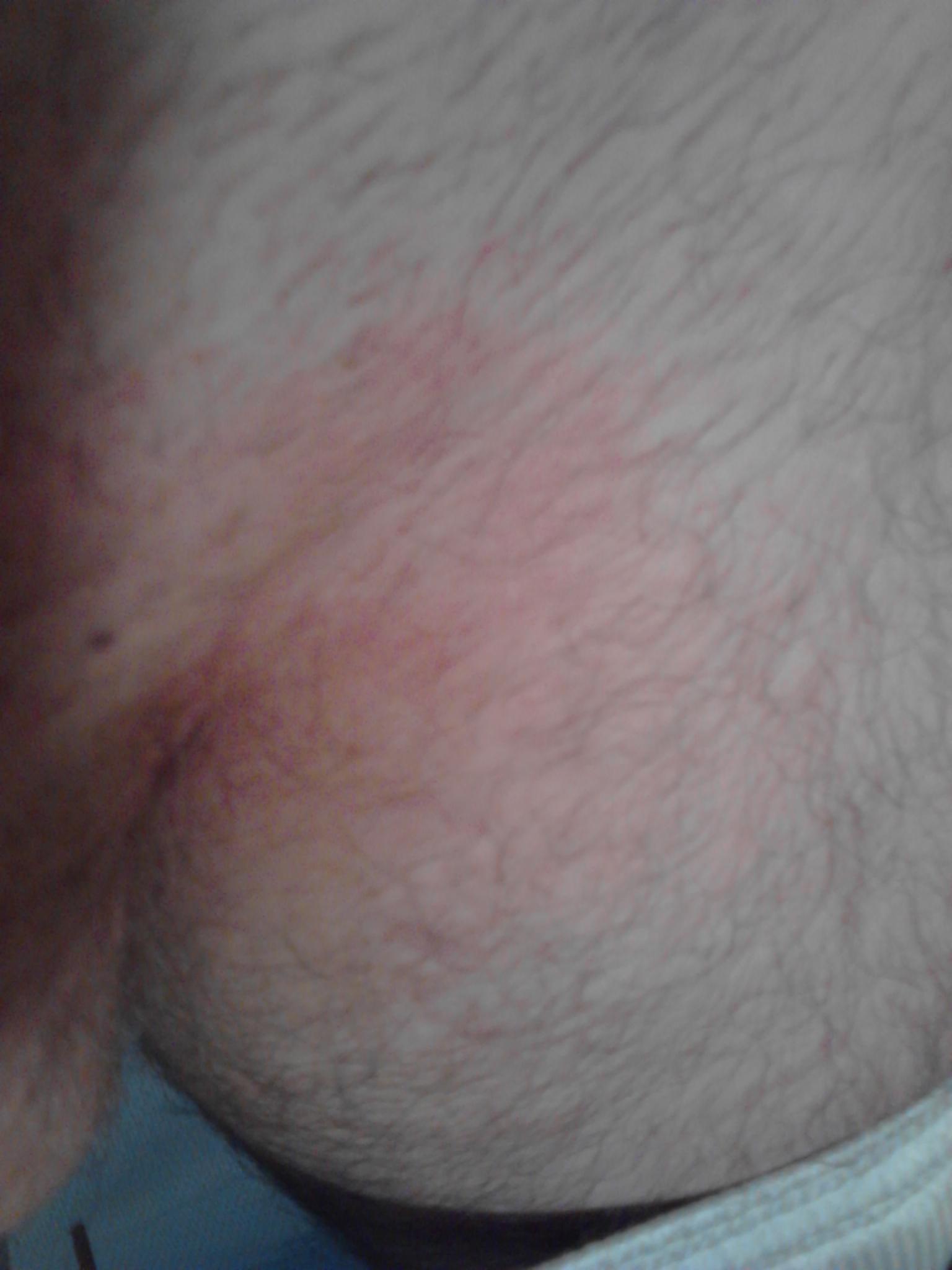Nereida gallardo boob
