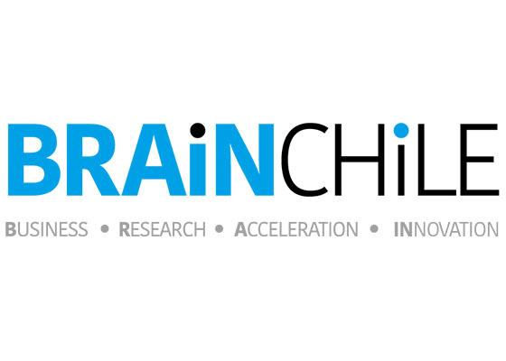 Brain chile
