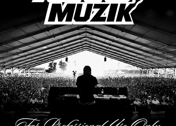 Download AraabMuzik's For Professional Use Only mixtape