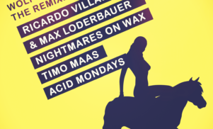 Stream Ricardo Villalobos and Max Loderbauer's remix of jazz luminary Wolfgang Haffner's 'Bing'