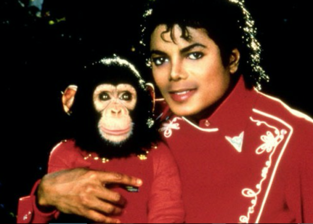 Biopic about Michael Jackson's chimpanzee tops Blacklist screenplay survey