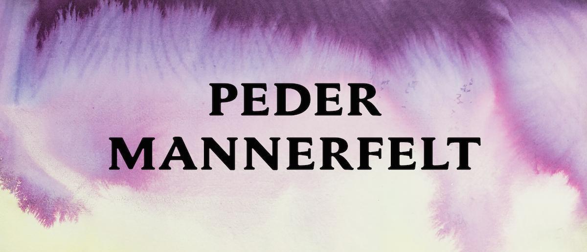 Quarter Report - Peder Mannerfelt