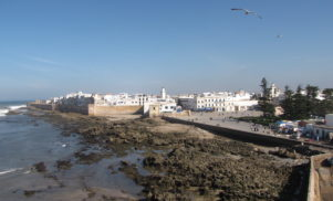 Morocco's Moga festival completes line-up with Sonja Moonear, Petre Inspirescu, Richard Horowitz