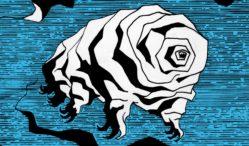 Ducktails Announces New Album Jersey Devil Releases Map