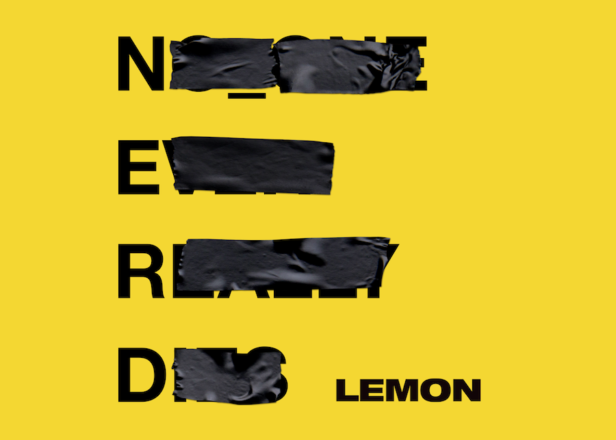 NERD Recruits A Rapping Rihanna For Their New Lemon Song & Video!