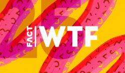 https3amazonawscomfactmag-imageswp-contentuploads201712FACT-EOY-12-9-WTF-Banner-249x146jpg