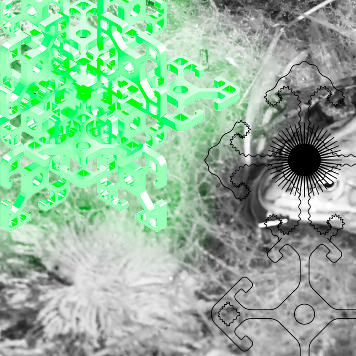 Jonáš Gruska imagines alien ceremonial music on new album Žaburina