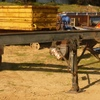 Skel Tri Axle trailer For Sale