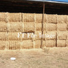 Cereal & Vetch Hay in 8x4x3's For Sale