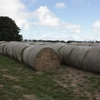 140 Rye and Clover Round Bales