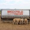 Hay/Grain Sheep Feeders