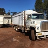 Ford Louisville 8000 + Tipping Pig trailer Ideal Farm truck.