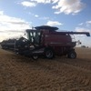 Trealla harvesting - owner operated - Contractors
