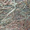 Oaten Rye Clover Hay For Sale in 8x4x4's Delivered