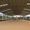 Arena / Shed For Sale