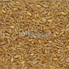 300mt ASW1 Wheat for Sale Ex Farm - Grain & Seed