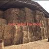 200 Bales of New Season Rye Hay Shedded 8x4x3