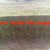170 acres of New Season Vetch Hay