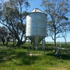 Seed silo Nelson
