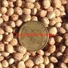 200mt Mandelup Lupins For Sale Ex Farm off Header - Grain & Seed