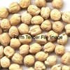 160mt of 090's Genesis Chick Peas For Sale - Grain & Seed