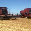 Harvesting Contractor available w 2 x 2388 CASE Headers w 36FT Draper Fronts at Coonamble