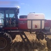 2011 Massey Ferguson 9435 MF Windrower with 36ft 5200 Draper Front For Sale